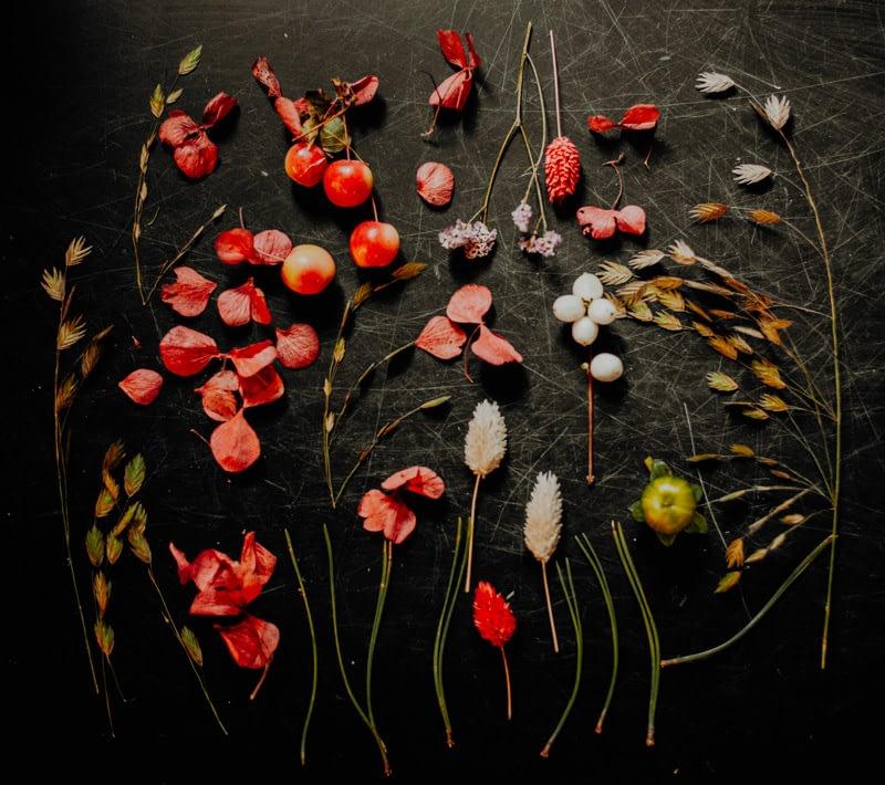 Compositions automnales avec branchages et fleurs de saisons